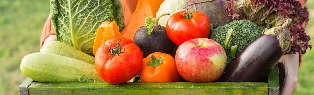 Covid y ecología: una coincidencia para el sector gastronómico