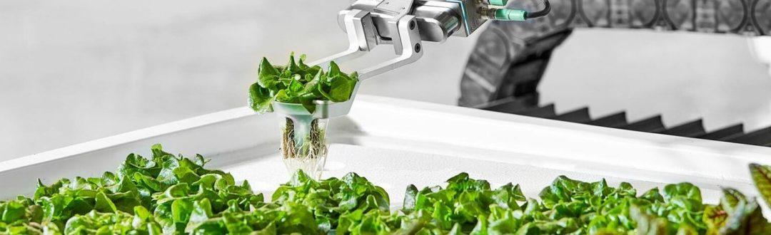 Foodtech: la revolución de la gastronomía